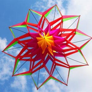 3D Rainbow Colorful Flower Kite Enstaka Line Outdoor Leksaker Flying For Barn Sport