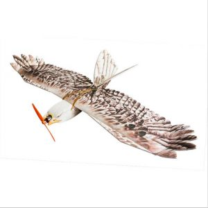 Dancing Wings Hobby DW Eagle EPP Mini Slow Flyer 1200mm Wingspan RC Flygplan KIT