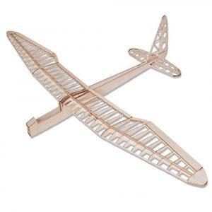 Sunbird 1600mm Wingspan Balsa Wood RC Flygplan KIT