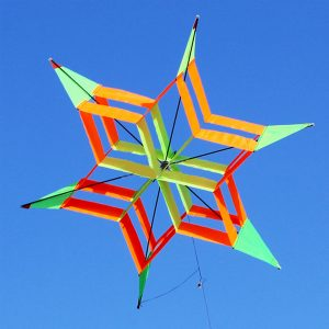 3D Colorful Flower Kite Single Line Utomhussporter Toy Ljus Wind Flying Kids