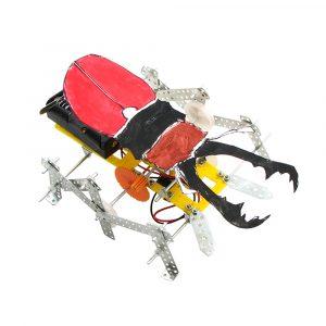 DIY Beetle Robot Educational Electric Scientific Experiment Toys for Children